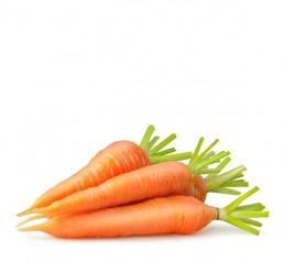 Flevotrade Carrots