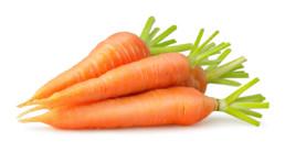 Flevotrade wortels