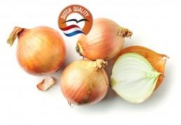 Flevotrade Onions